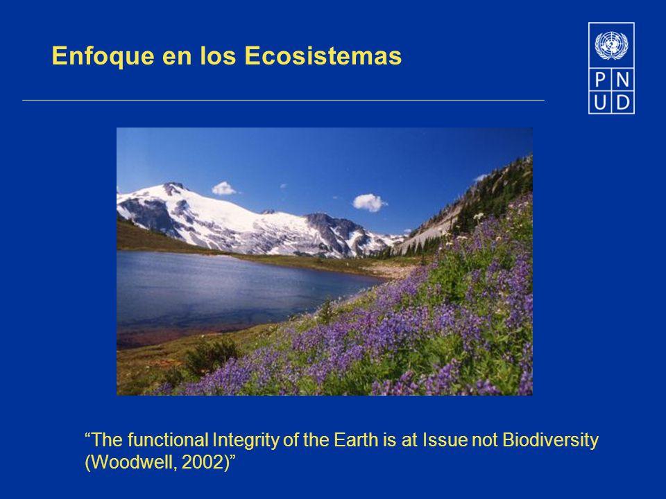 Enfoque en los Ecosistemas