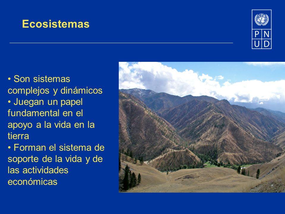Ecosistemas Son sistemas complejos y dinámicos