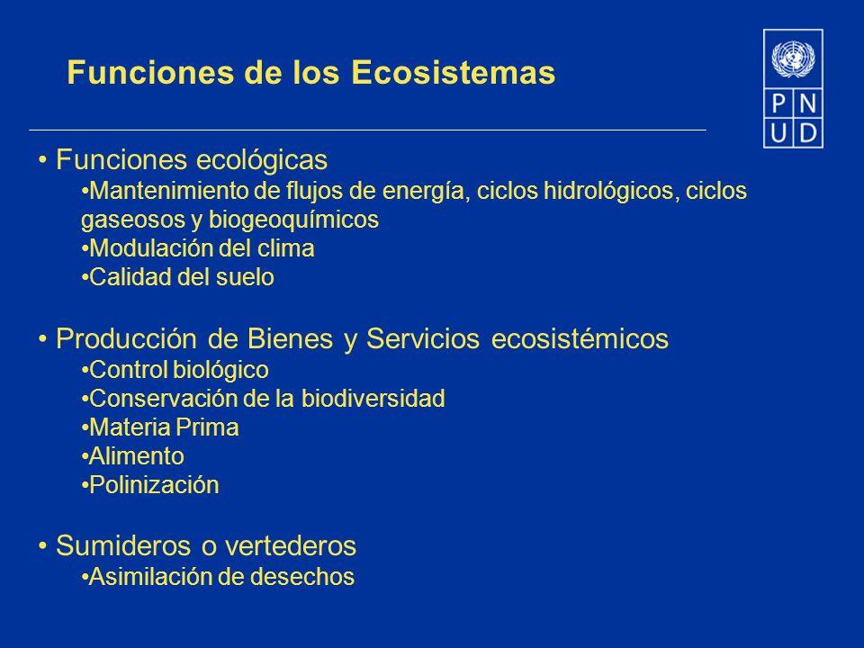 Funciones de los Ecosistemas