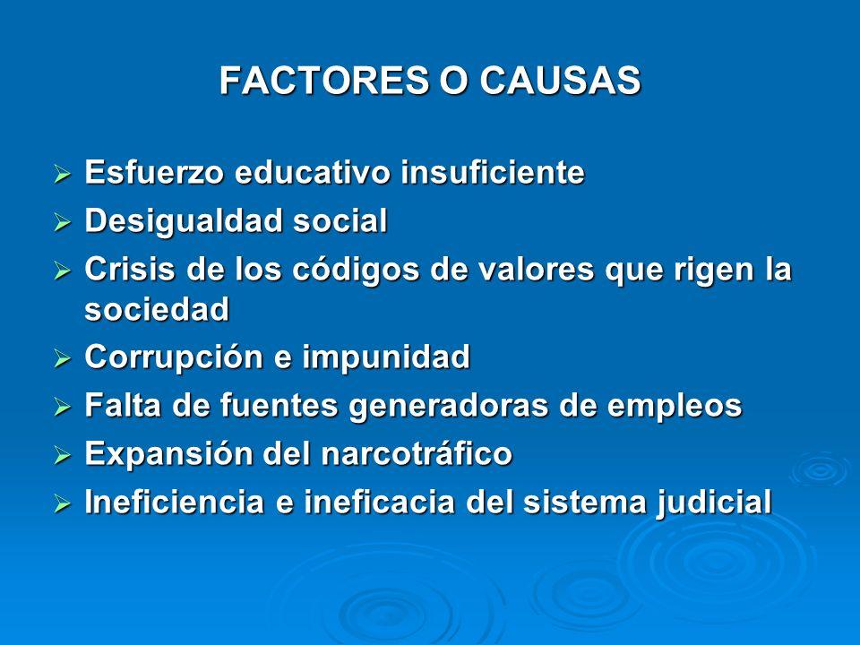 FACTORES O CAUSAS Esfuerzo educativo insuficiente Desigualdad social