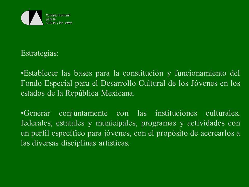 Consejo Nacional para la. Cultura y las Artes. Estrategias: