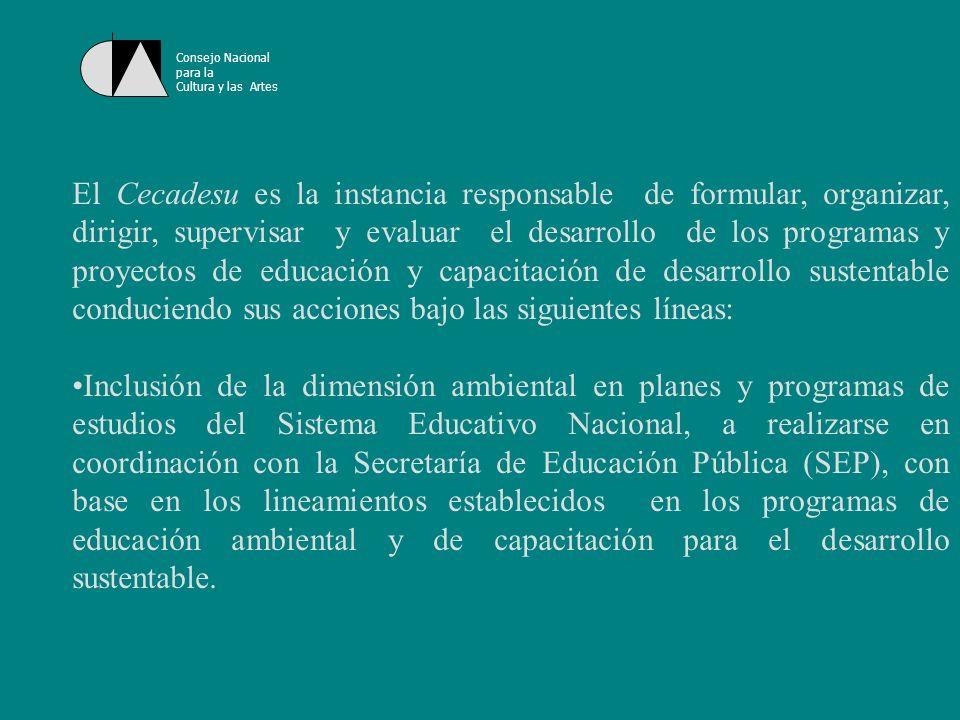 Consejo Nacional para la. Cultura y las Artes.