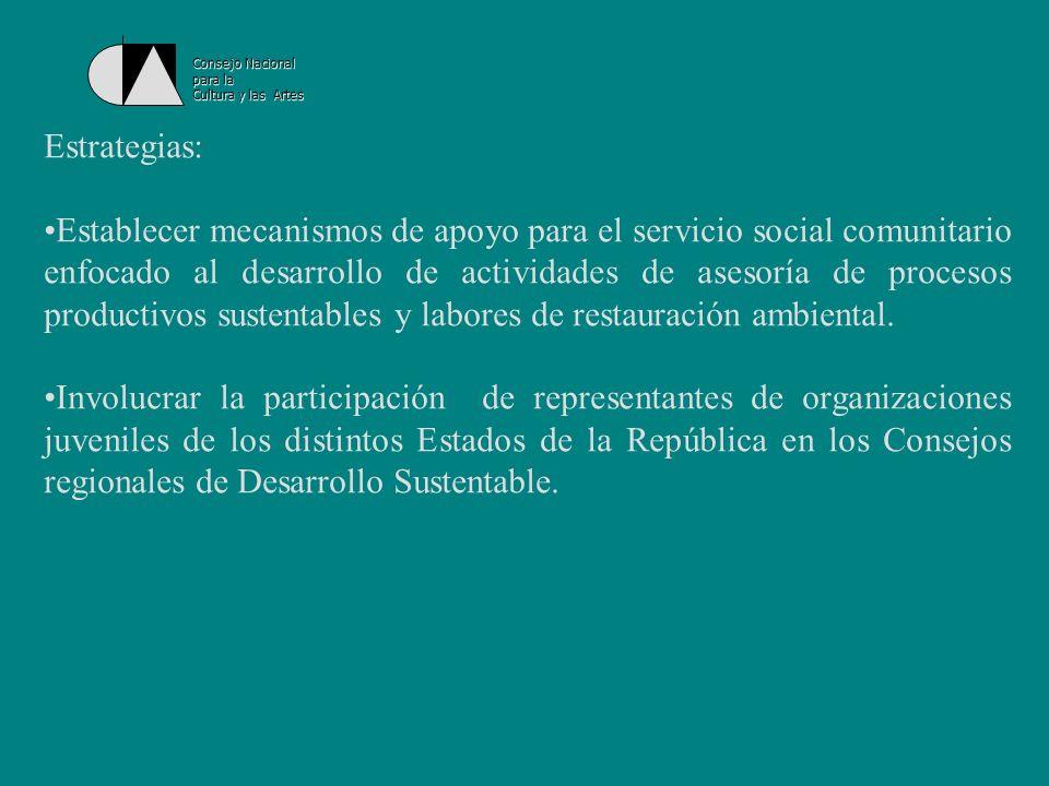 Consejo Nacionalpara la. Cultura y las Artes. Estrategias: