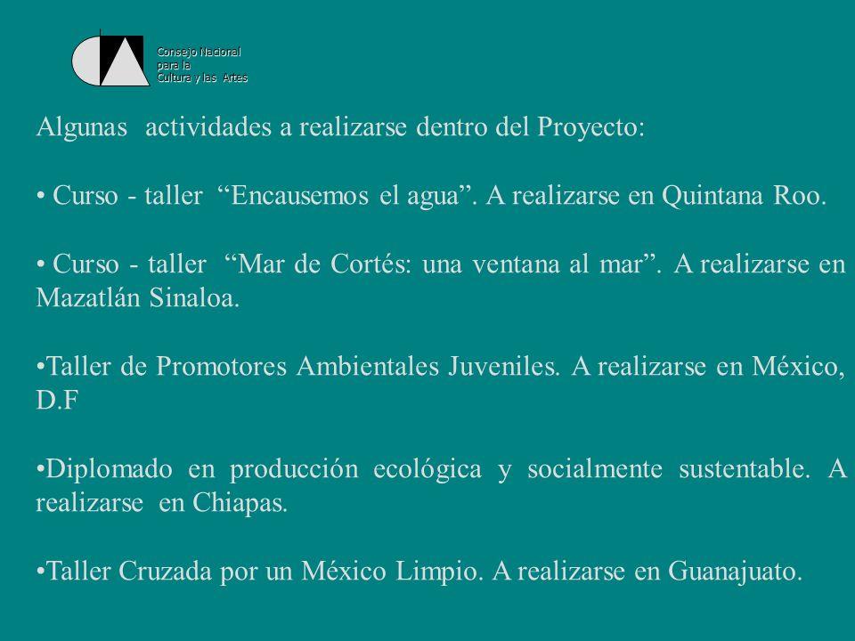 Algunas actividades a realizarse dentro del Proyecto: