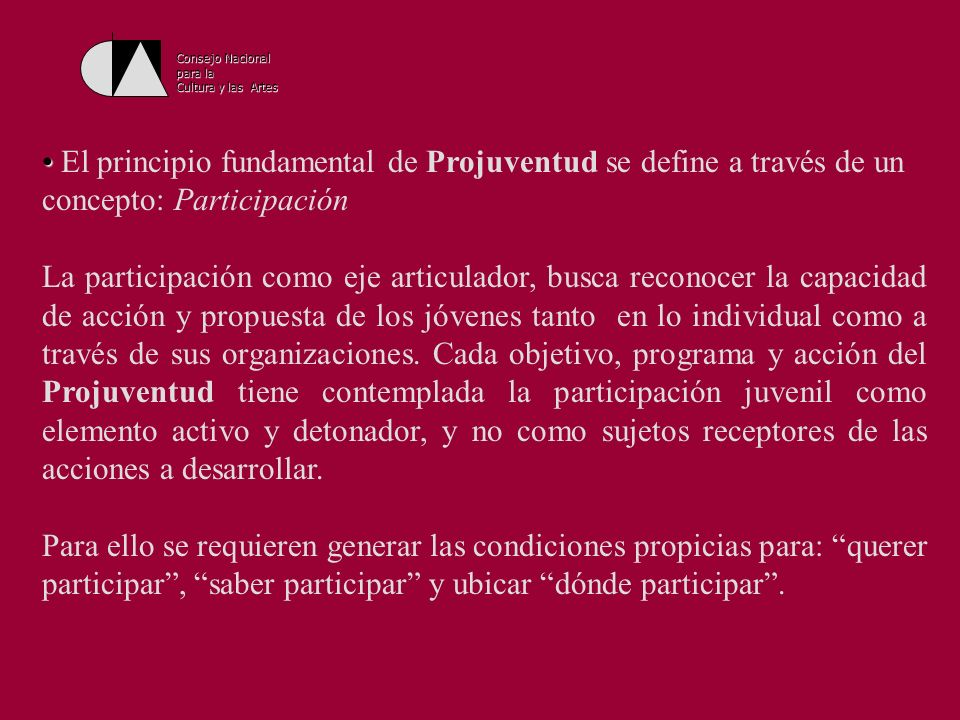 Consejo Nacional para la. Cultura y las Artes. El principio fundamental de Projuventud se define a través de un concepto: Participación.