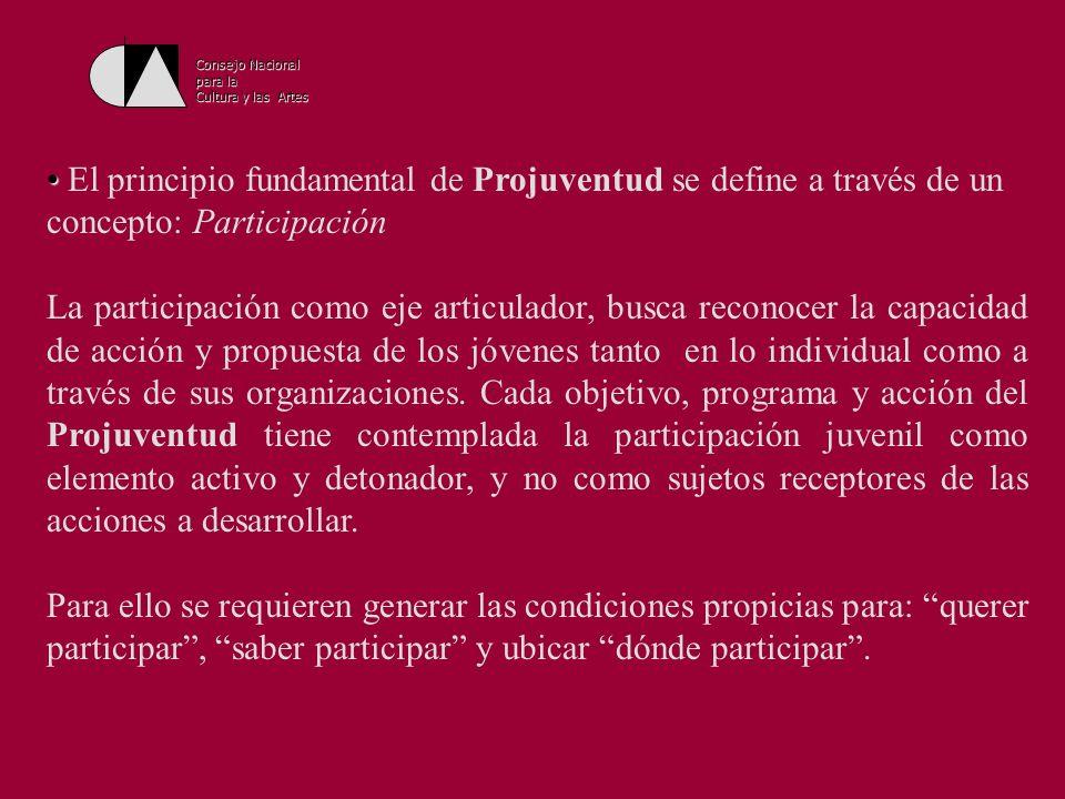 Consejo Nacionalpara la. Cultura y las Artes. El principio fundamental de Projuventud se define a través de un concepto: Participación.