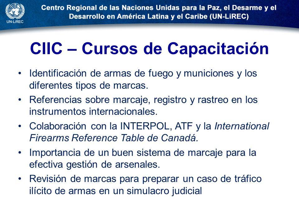CIIC – Cursos de Capacitación