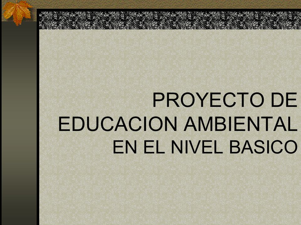 PROYECTO DE EDUCACION AMBIENTAL EN EL NIVEL BASICO