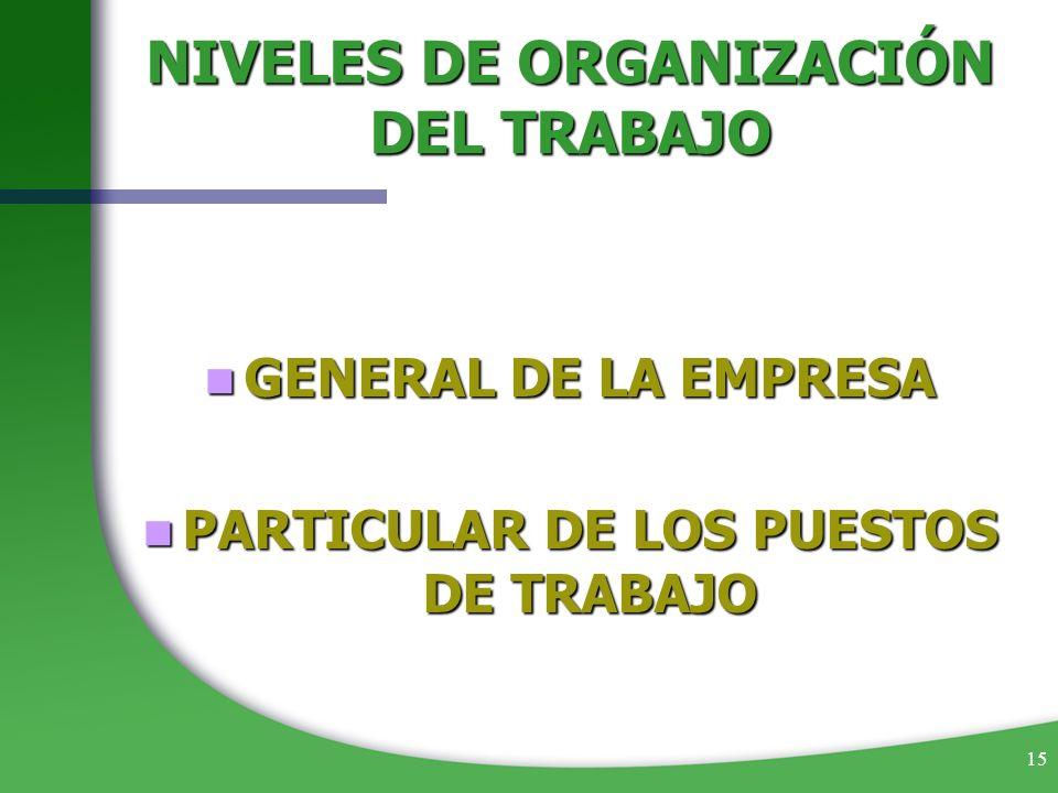 NIVELES DE ORGANIZACIÓN DEL TRABAJO