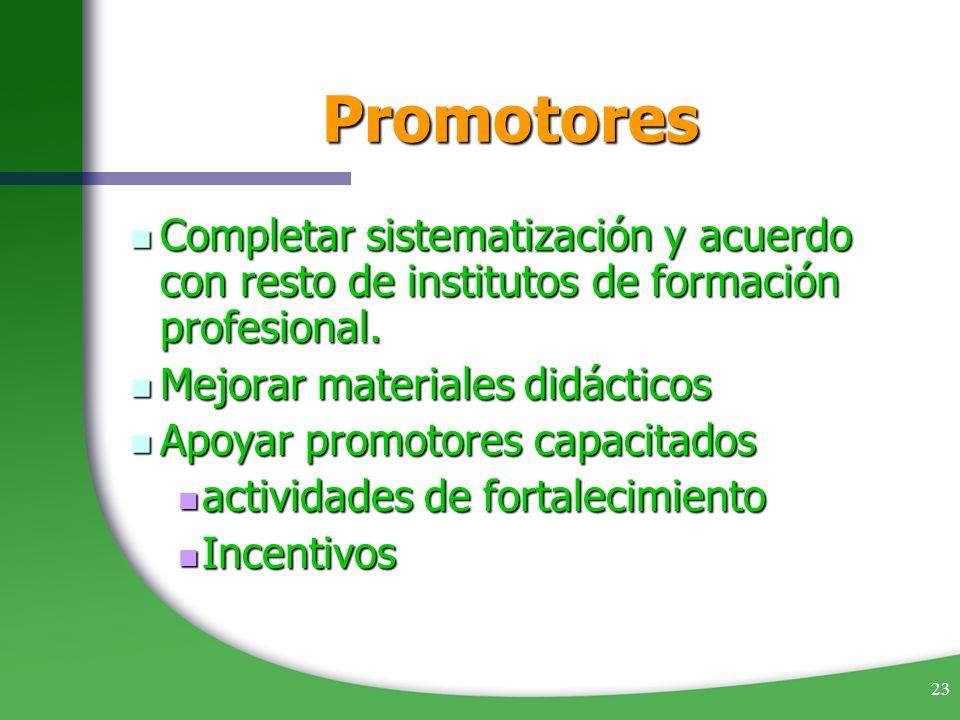 PromotoresCompletar sistematización y acuerdo con resto de institutos de formación profesional. Mejorar materiales didácticos.