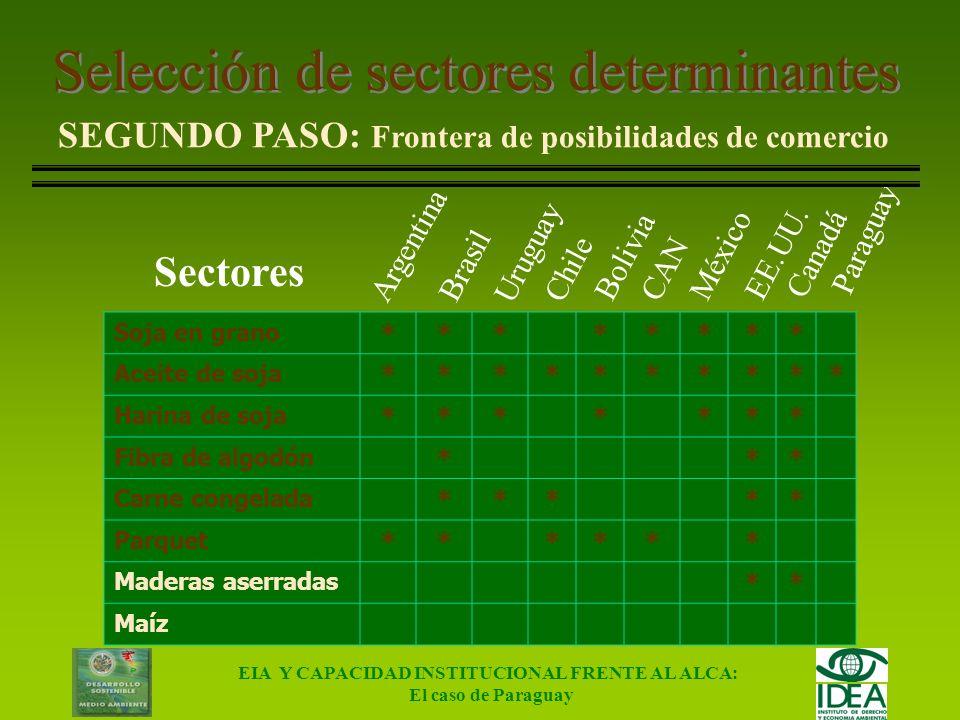 Selección de sectores determinantes