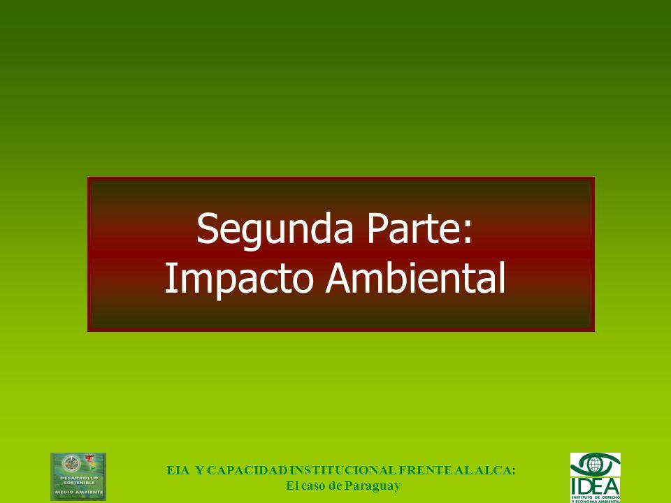 Segunda Parte: Impacto Ambiental