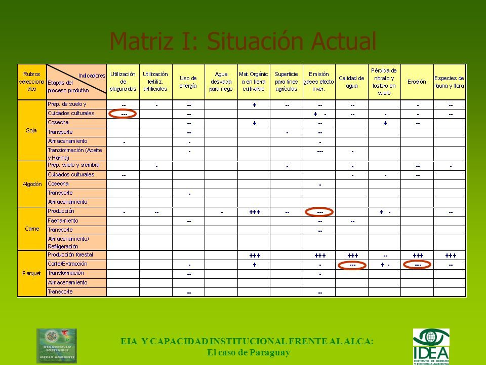 Matriz I: Situación Actual