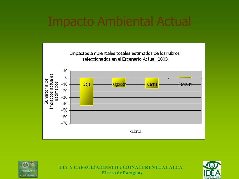 Impacto Ambiental Actual