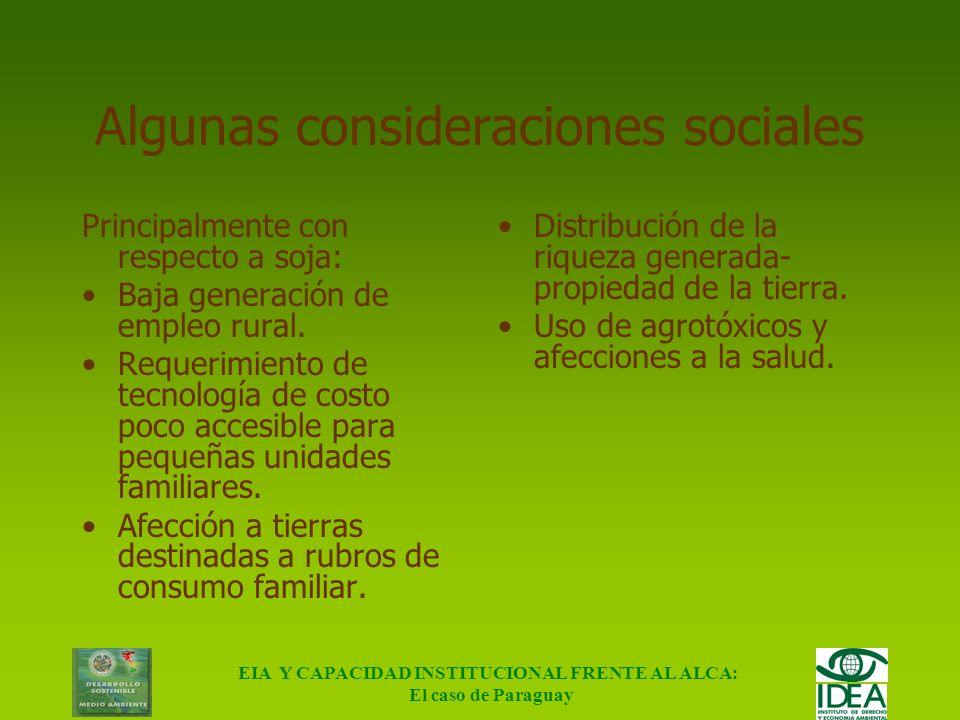 Algunas consideraciones sociales