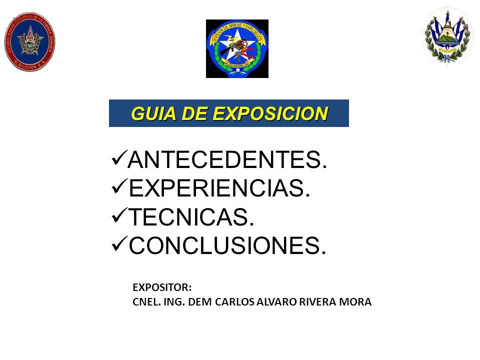 ANTECEDENTES. EXPERIENCIAS. TECNICAS. CONCLUSIONES. GUIA DE EXPOSICION