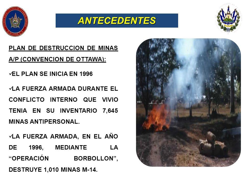 ANTECEDENTES PLAN DE DESTRUCCION DE MINAS A/P (CONVENCION DE OTTAWA):