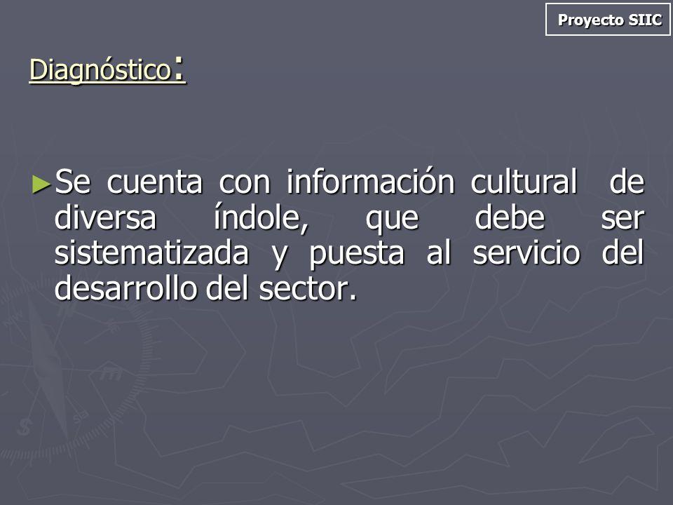 Proyecto SIIC Diagnóstico: