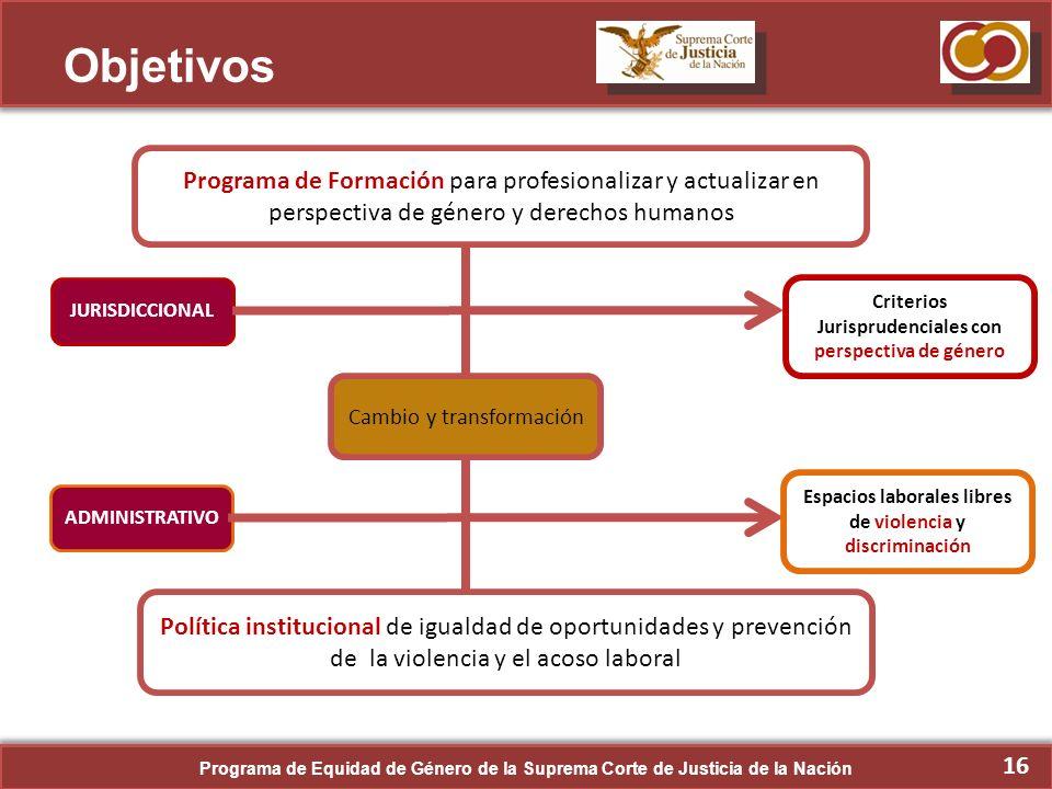 Objetivos Programa de Formación para profesionalizar y actualizar en perspectiva de género y derechos humanos.