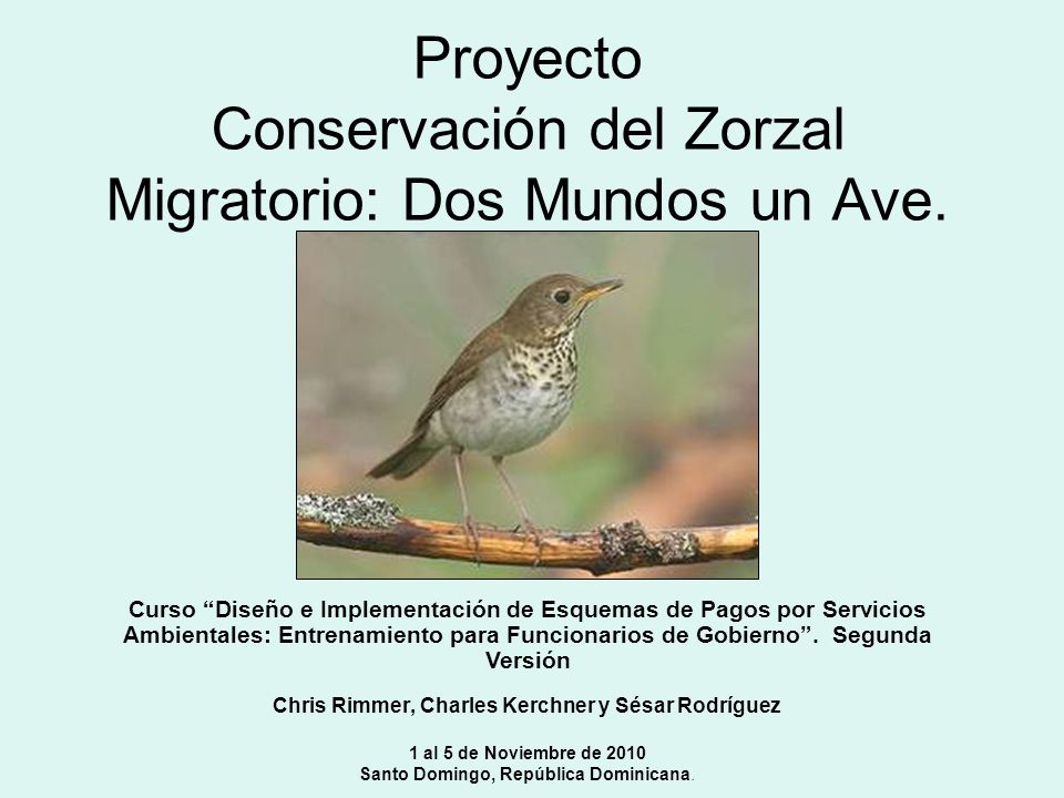 Proyecto Conservación del Zorzal Migratorio: Dos Mundos un Ave.