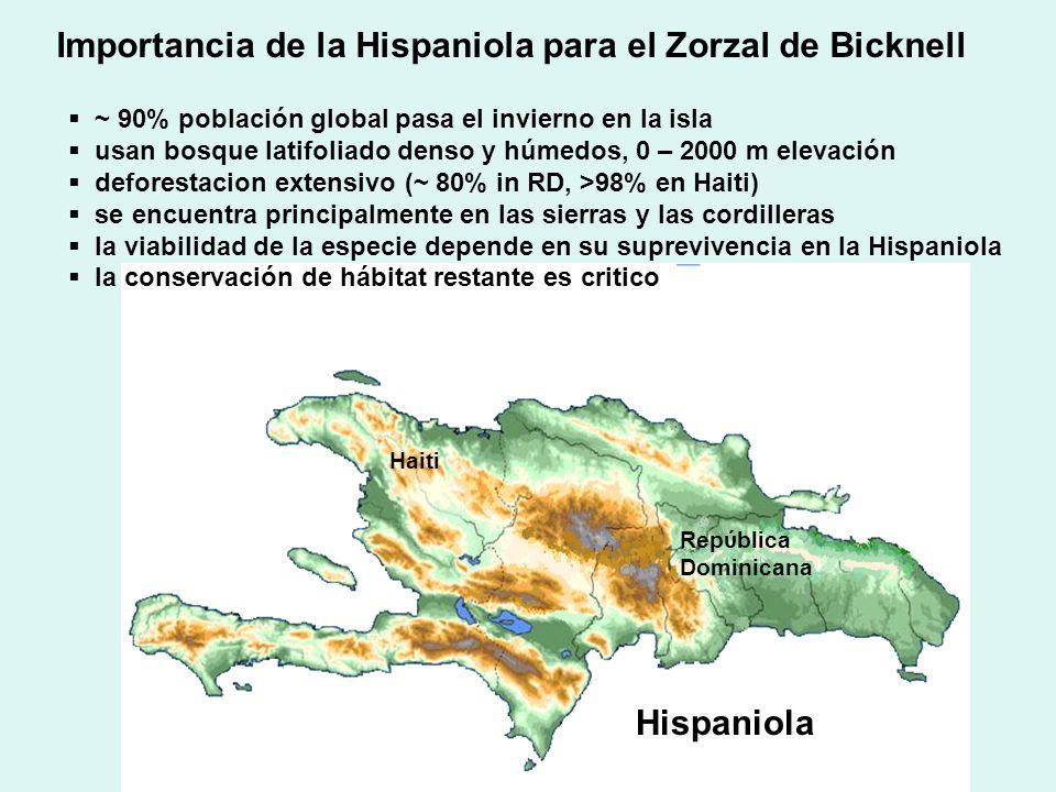 Importancia de la Hispaniola para el Zorzal de Bicknell