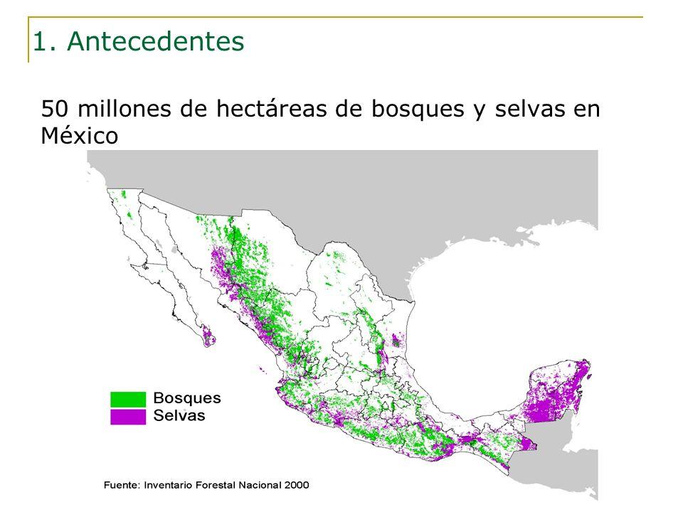 1. Antecedentes 50 millones de hectáreas de bosques y selvas en México