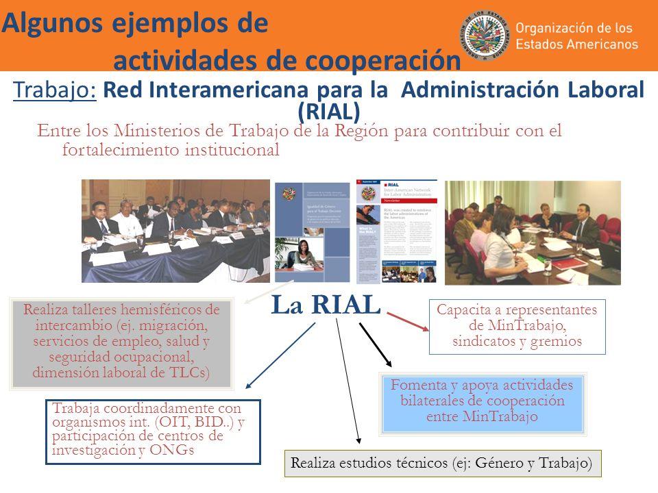 Trabajo: Red Interamericana para la Administración Laboral (RIAL)
