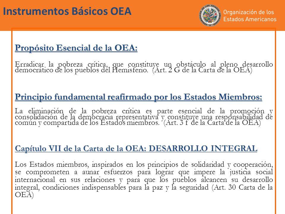 Instrumentos Básicos OEA