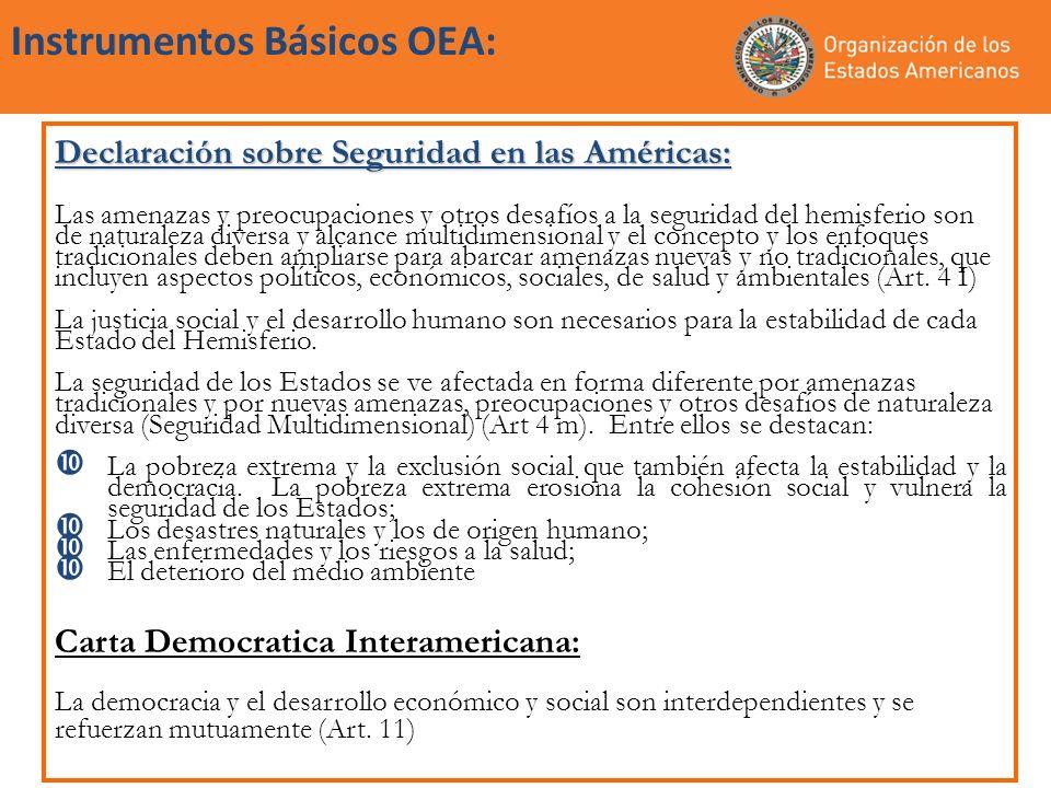 Instrumentos Básicos OEA: