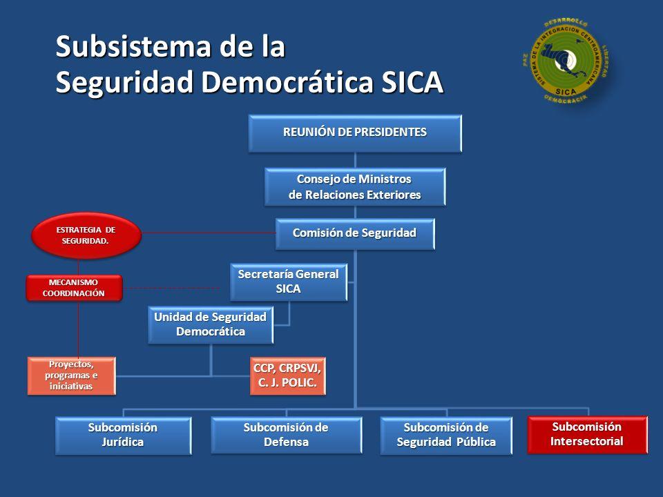 Seguridad Democrática SICA