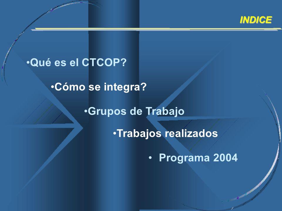 Qué es el CTCOP Cómo se integra Grupos de Trabajo