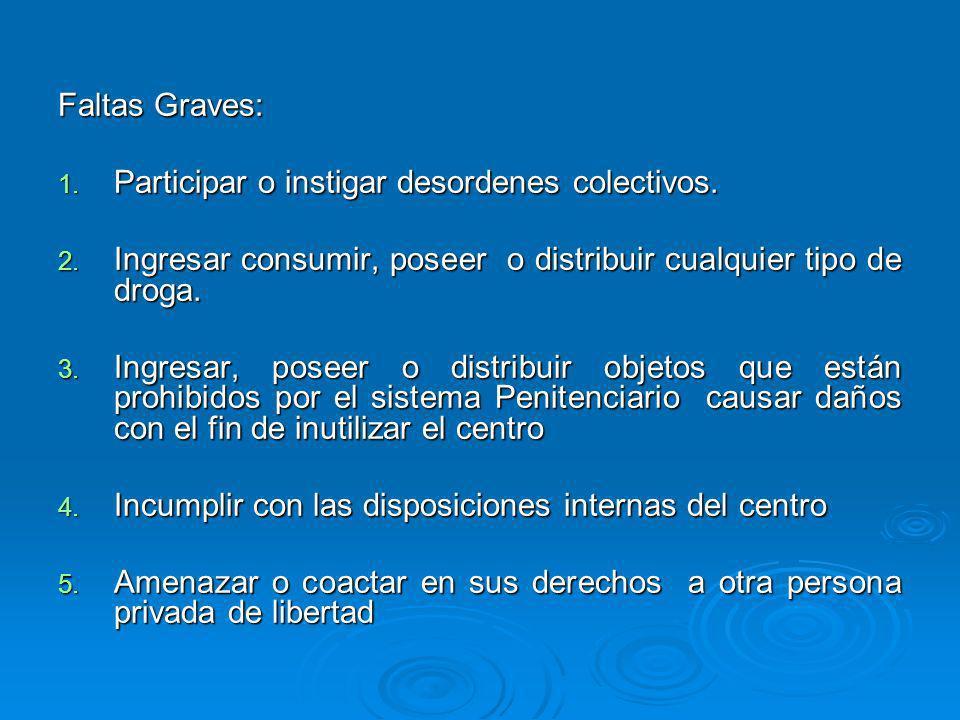 Faltas Graves:Participar o instigar desordenes colectivos. Ingresar consumir, poseer o distribuir cualquier tipo de droga.
