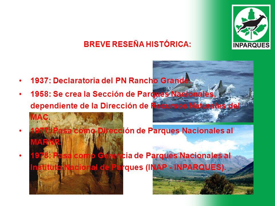 BREVE RESEÑA HISTÓRICA: