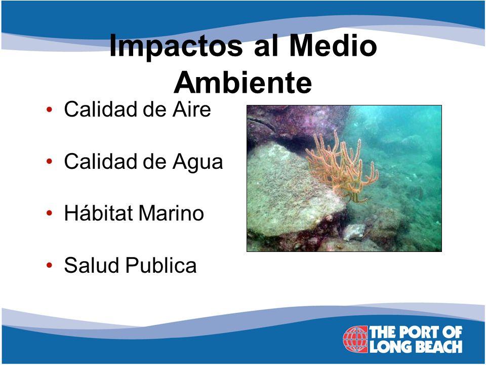 Impactos al Medio Ambiente