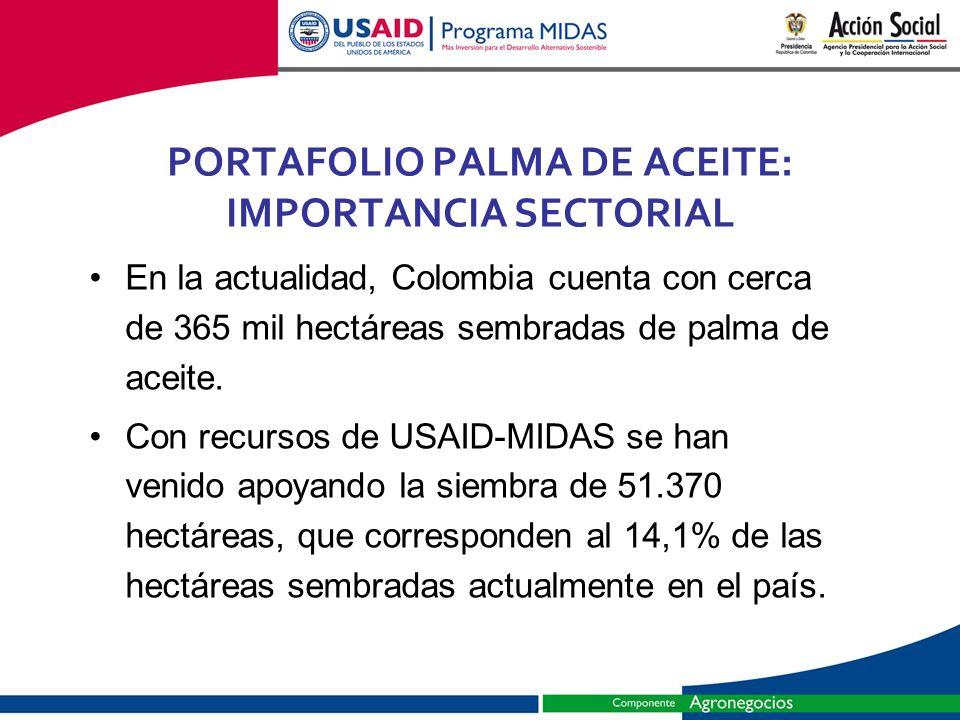 PORTAFOLIO PALMA DE ACEITE: IMPORTANCIA SECTORIAL
