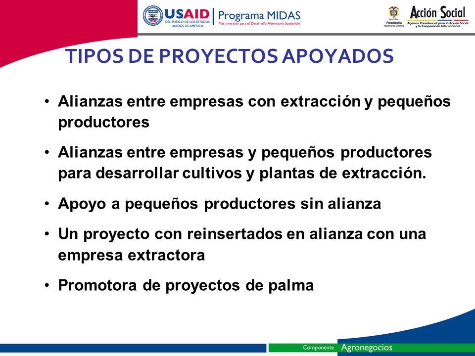 TIPOS DE PROYECTOS APOYADOS