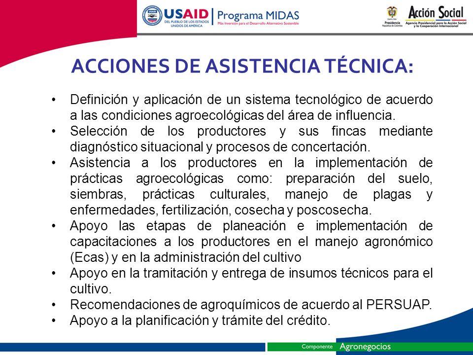 ACCIONES DE ASISTENCIA TÉCNICA: