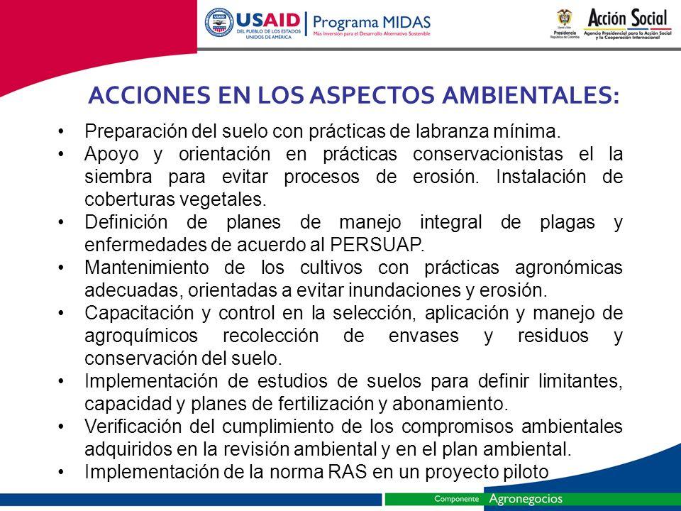 ACCIONES EN LOS ASPECTOS AMBIENTALES: