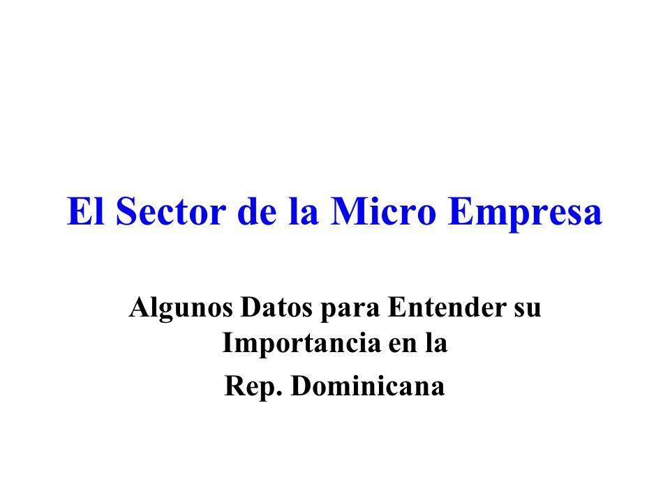 El Sector de la Micro Empresa