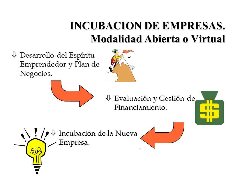 INCUBACION DE EMPRESAS. Modalidad Abierta o Virtual
