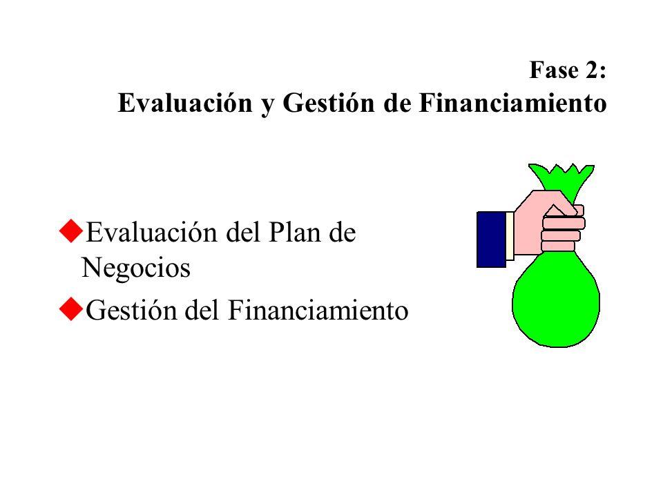 Fase 2: Evaluación y Gestión de Financiamiento