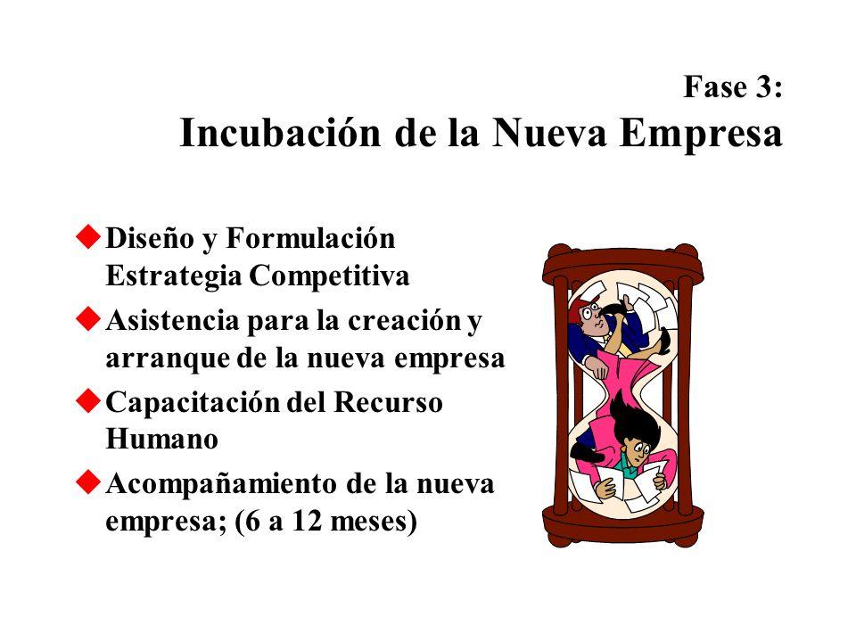 Fase 3: Incubación de la Nueva Empresa