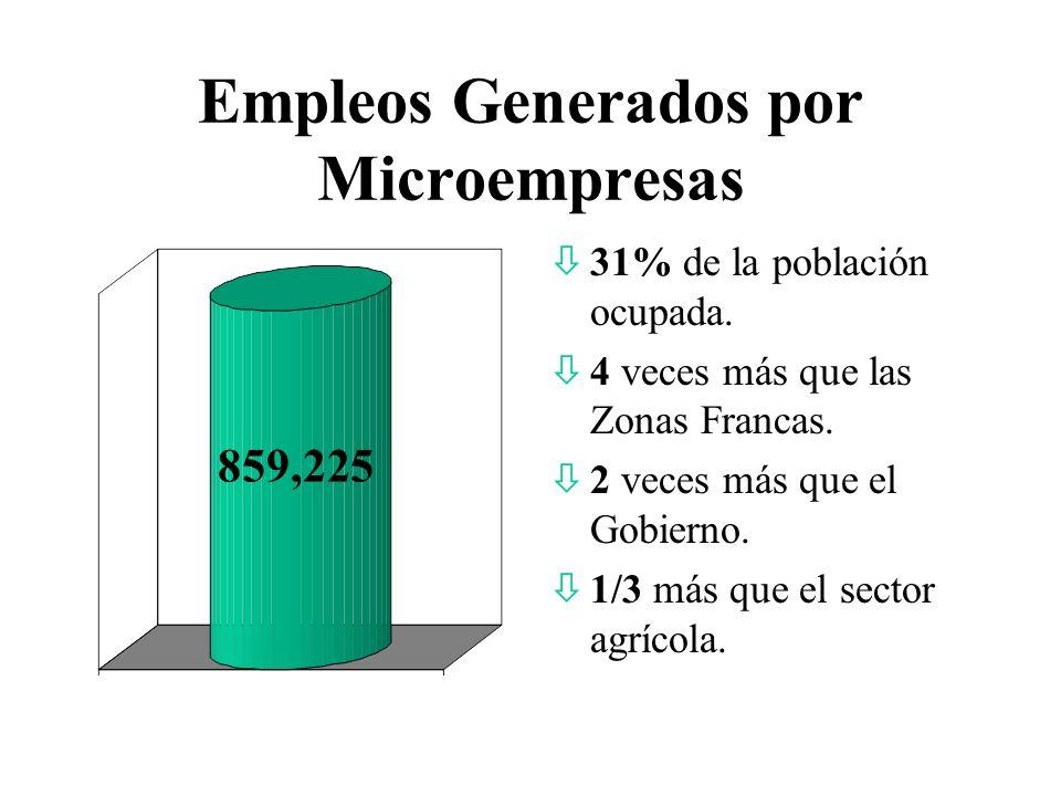 Empleos Generados por Microempresas