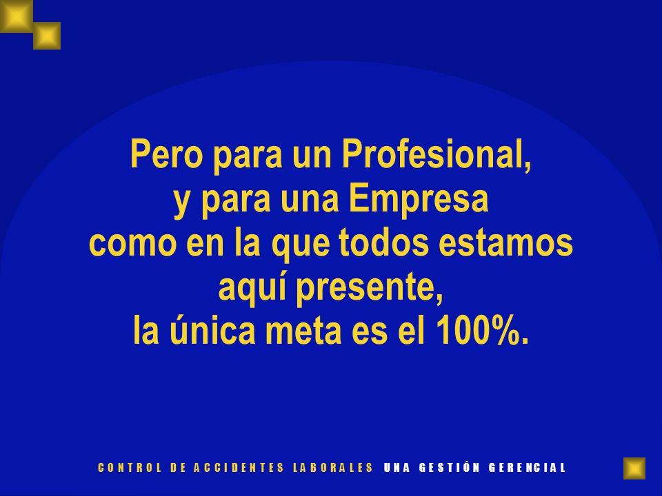 Pero para un Profesional, y para una Empresa como en la que todos estamos aquí presente, la única meta es el 100%.