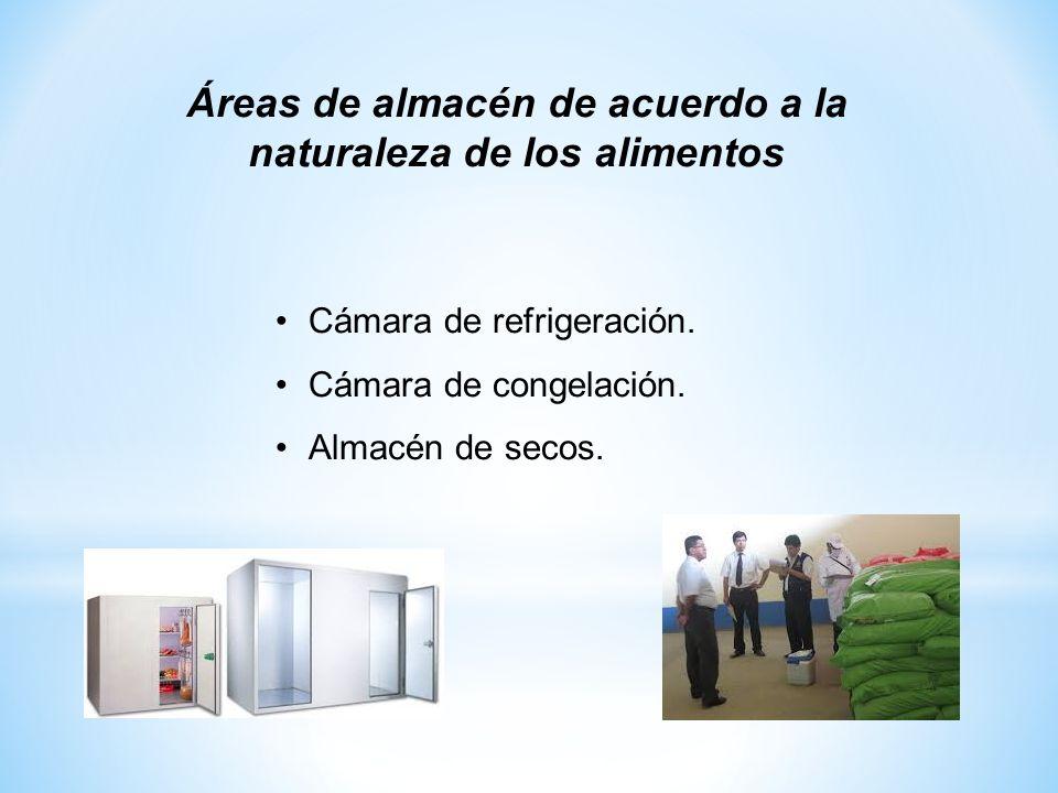 Áreas de almacén de acuerdo a la naturaleza de los alimentos