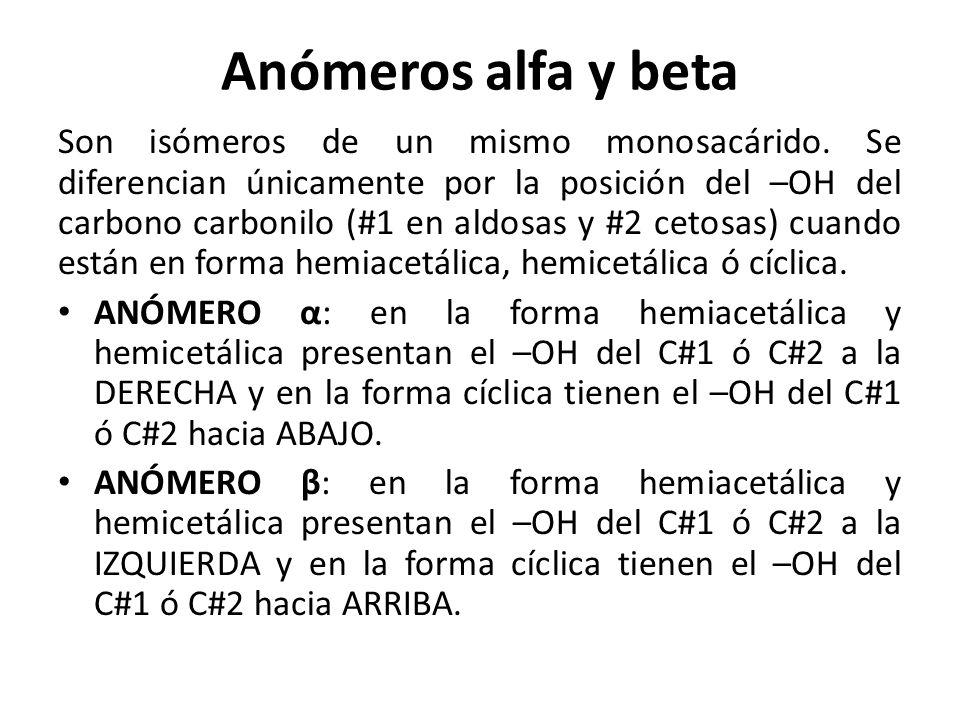 Son las principales mol culas de los seres vivos ppt for Definicion de beta