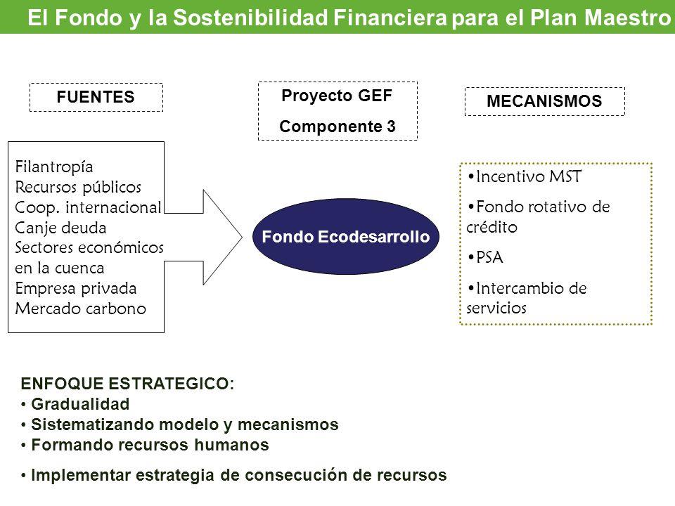 El Fondo y la Sostenibilidad Financiera para el Plan Maestro