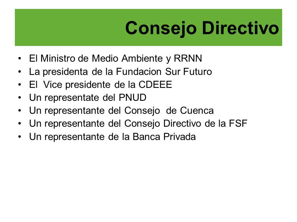Consejo Directivo El Ministro de Medio Ambiente y RRNN