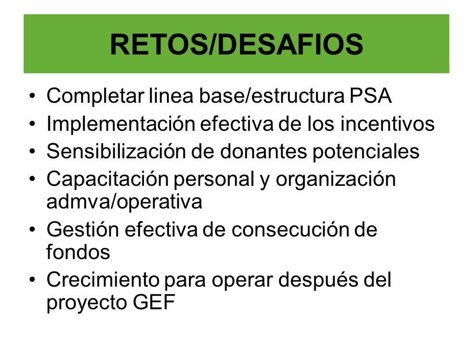 RETOS/DESAFIOS Completar linea base/estructura PSA