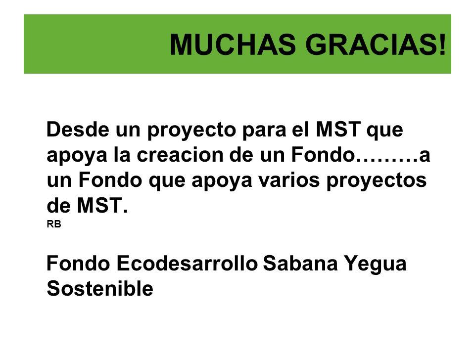MUCHAS GRACIAS! Desde un proyecto para el MST que apoya la creacion de un Fondo………a un Fondo que apoya varios proyectos de MST. RB.